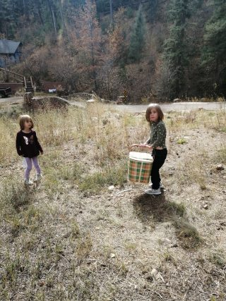 children hiking with a large picnic basket in scenic Colorado woods